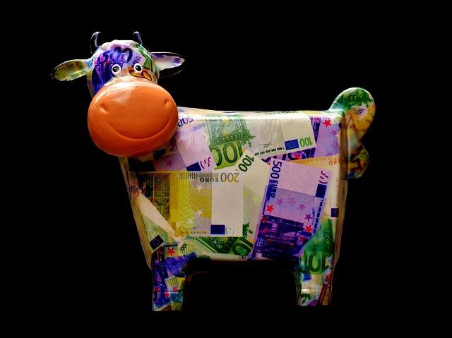 Verantwoord geld lenen